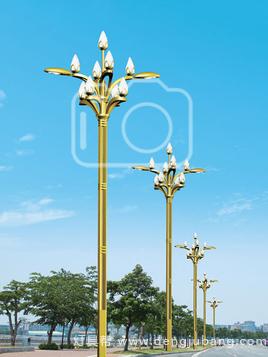 玉兰灯-00095