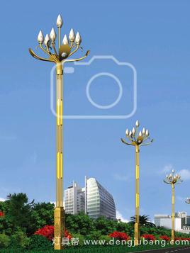 玉兰灯-00148