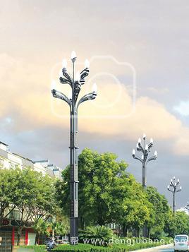 玉兰灯-00173