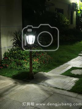 草坪灯-00418