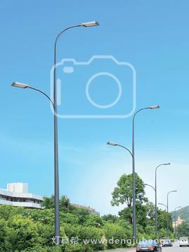 道路灯-01529