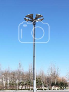 高中杆灯-00280
